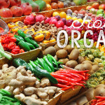 A Case for Eating Organic | rashon